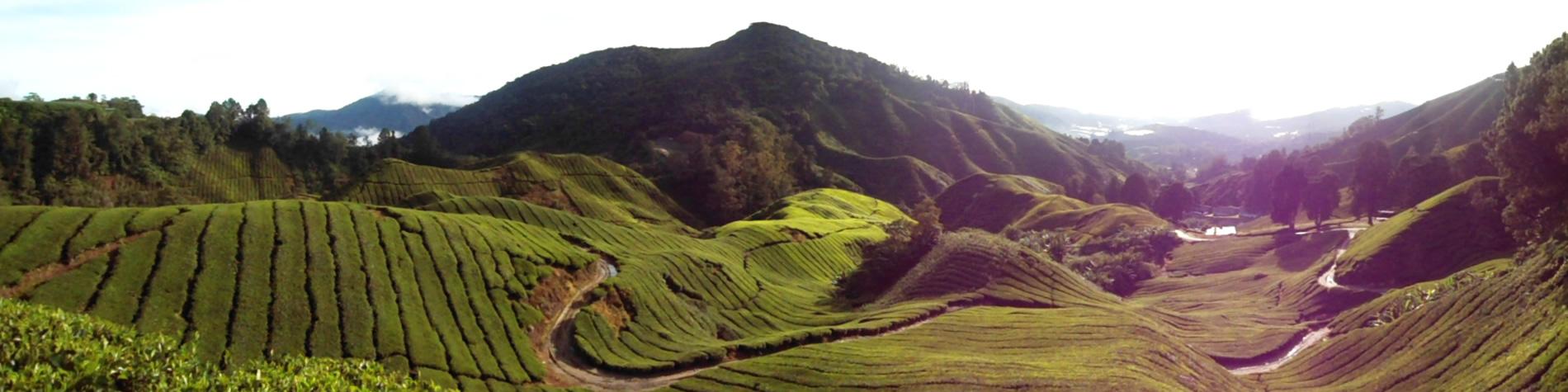 malaysia-slide03